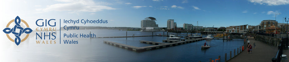 Panorama of Cardiff Bay with Wales Public Health logo
